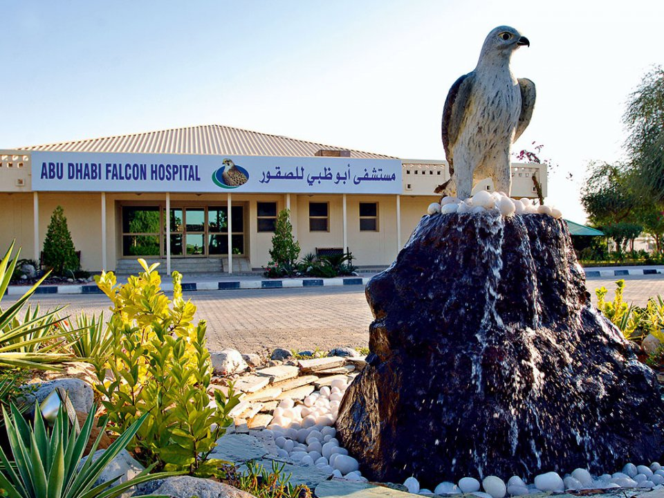 5. L'Abu Dhabi Falcon Hospital