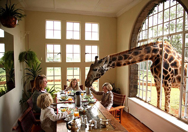 giraffe-manor-lodge-kenya-1