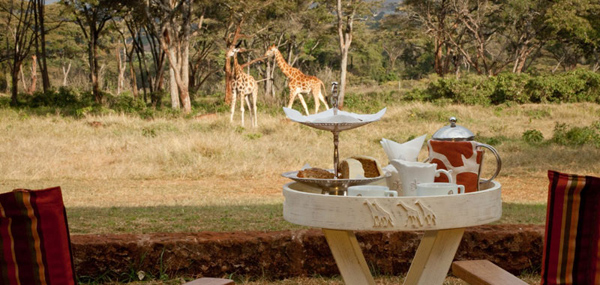 giraffe-manor-lodge-kenya-10