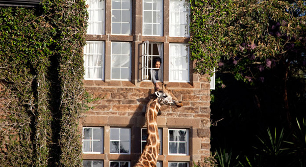 giraffe-manor-lodge-kenya-9