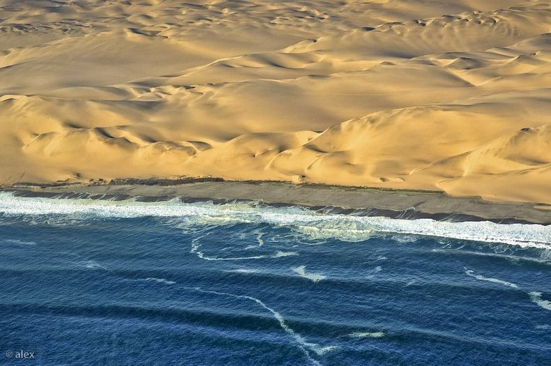 namib-desert-meets-sea-10[6]