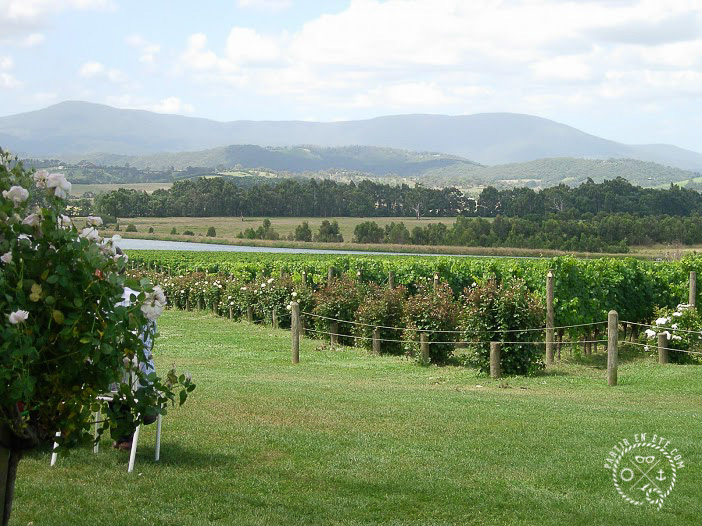 Yarra Valley - Photo: Nathalie Astruc