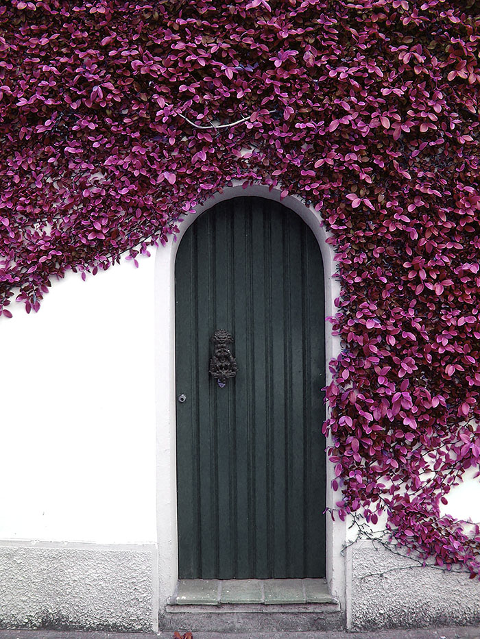 amazing-old-vintage-doors-photography-5