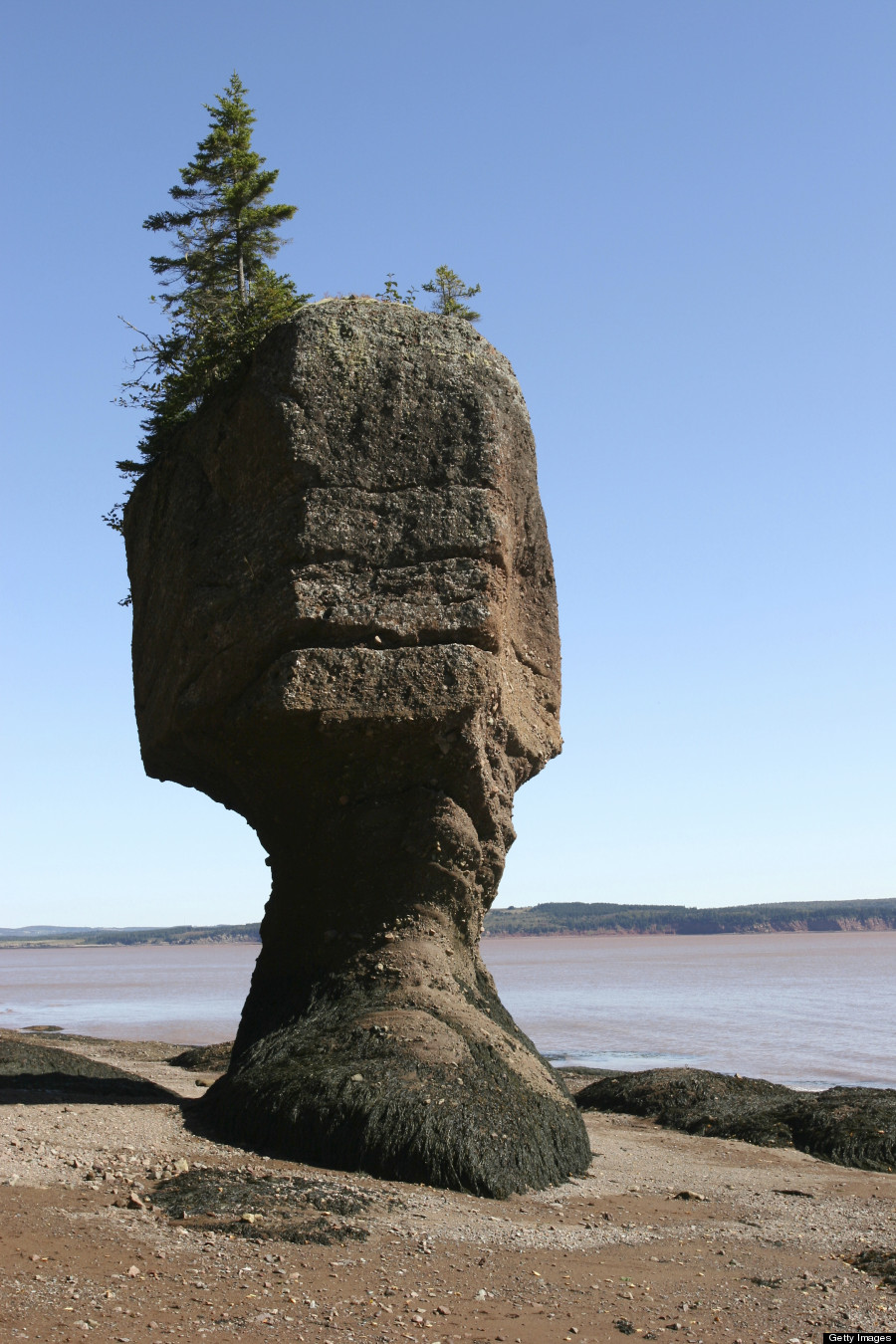 o-BAY-OF-FUNDY-900 (1)