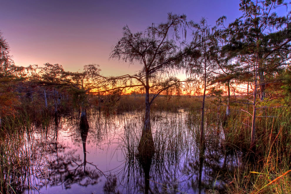 Cypress-sunset-at-Everglades-National-Park